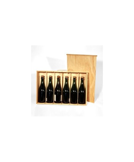 Caja 6 botellas plana mixta
